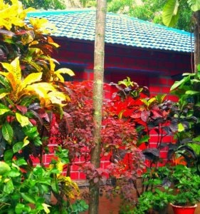 Chikmagalur resort cottage
