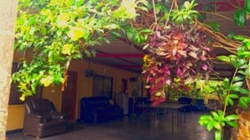 Chikmagalur homestay cottage view