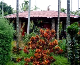 budget resort cottage chikmagalur