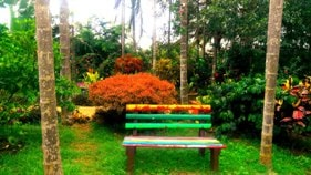 garden bench in Chikmagalur homestay & resort